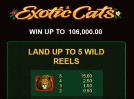 Exotic Cats Video Slot Review By Microgaming